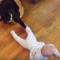 Zábavná videa koček a dětí