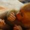Roztomilá opička